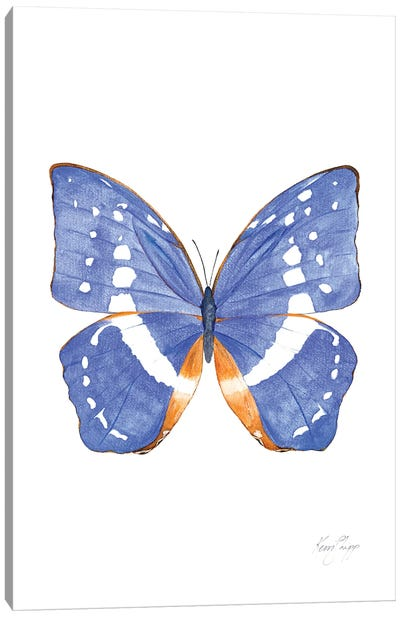 Butterfly In Cobalt Canvas Art Print