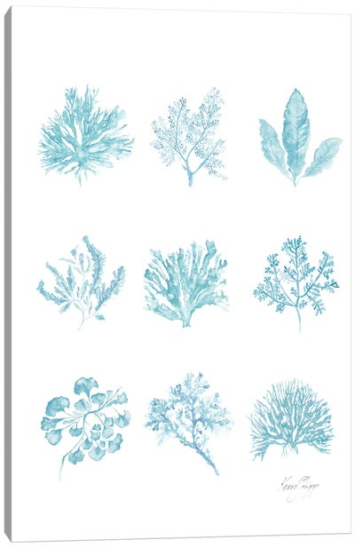 French Blue Coral Collection Canvas Art Print