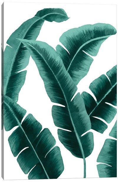 Banana Leaf I In Green Canvas Art Print