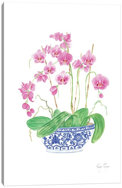 Pink Orchids In Vintage Blue And White China Canvas Art Print