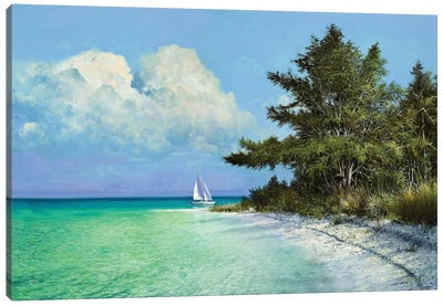 Cayo Costa Beach Canvas Art Print