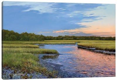 Evening Downs Canvas Art Print