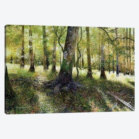 Little Econ River Canvas Print #KSU4} by Kent Sullivan Canvas Artwork