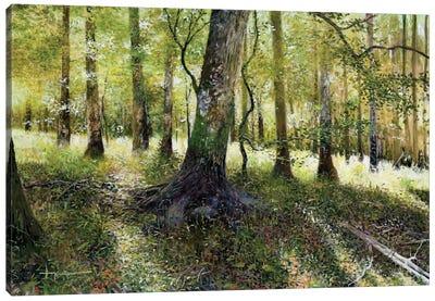 Little Econ River Canvas Art Print