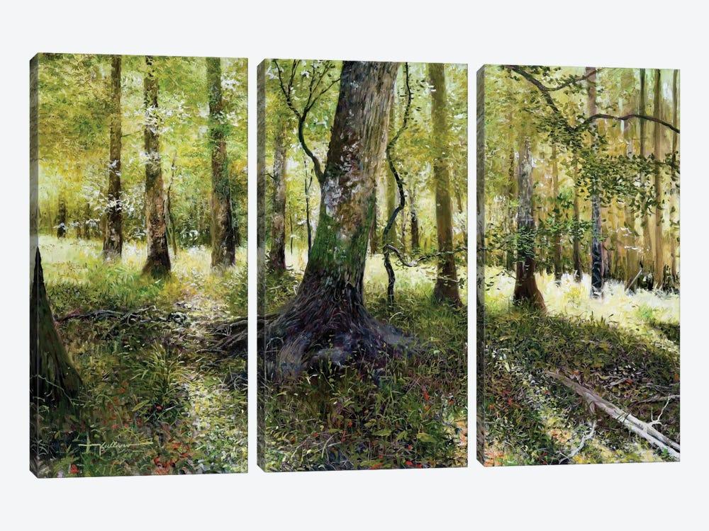 Little Econ River by Kent Sullivan 3-piece Canvas Art