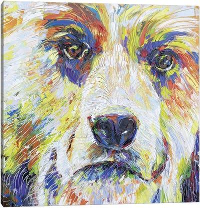 Spirit Bear IV Canvas Art Print