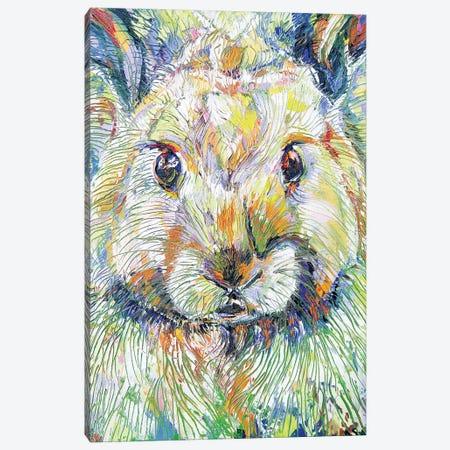 Wickle Wascal Canvas Print #KSV24} by Kathleen Steventon Canvas Art