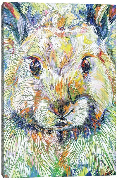 Wickle Wascal Canvas Art Print