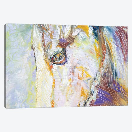 Youngster Canvas Print #KSV25} by Kathleen Steventon Canvas Artwork