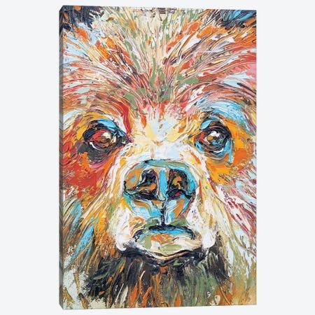 Baby Bear Canvas Print #KSV2} by Kathleen Steventon Canvas Art