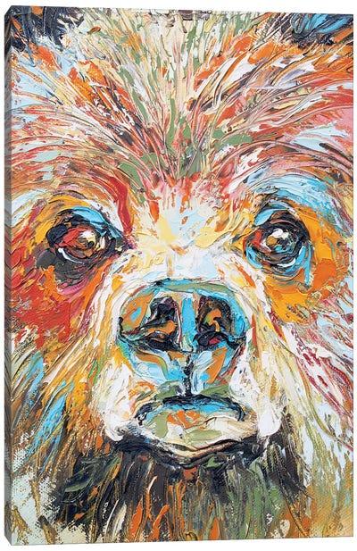 Baby Bear Canvas Art Print