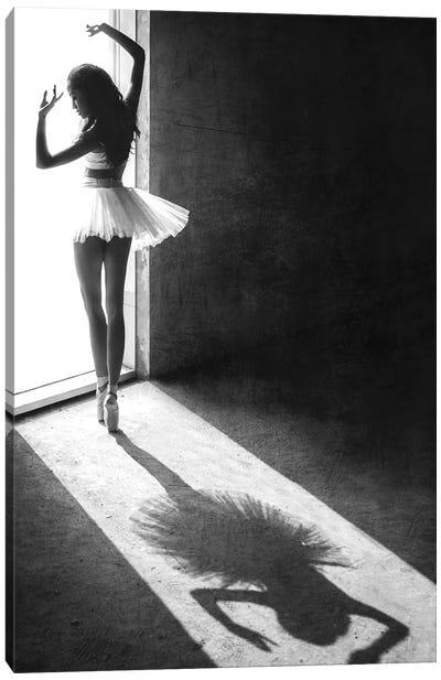 Shadow Dance Canvas Art Print
