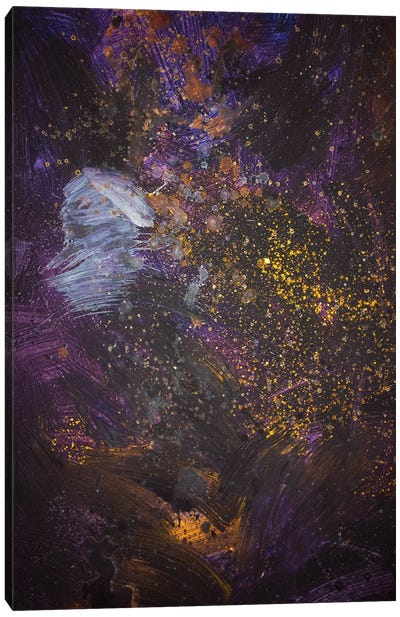 Space Between Us Canvas Art Print