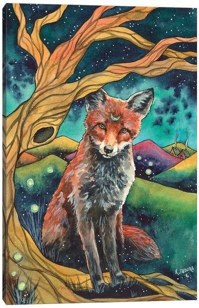 Shelter Under The Stars Canvas Art Print