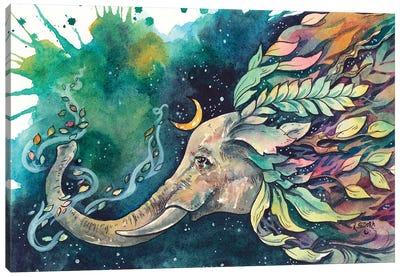 Balance Of Nature Canvas Art Print