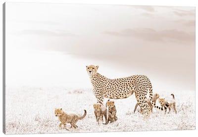 White Cheetah & Cubs Canvas Art Print