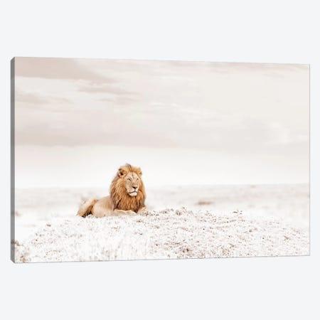 White Lion  Canvas Print #KTI29} by Klaus Tiedge Art Print