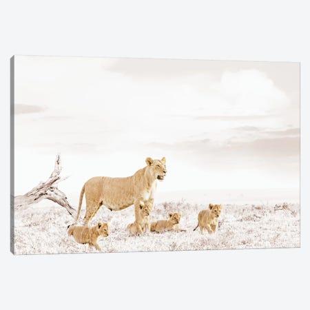 White Lioness & Cub Canvas Print #KTI30} by Klaus Tiedge Canvas Art