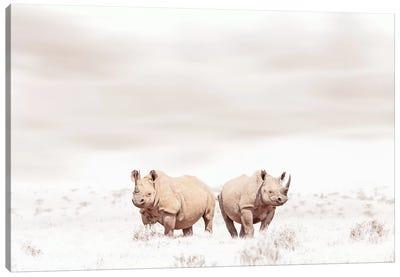 White Rhino Duo Canvas Art Print