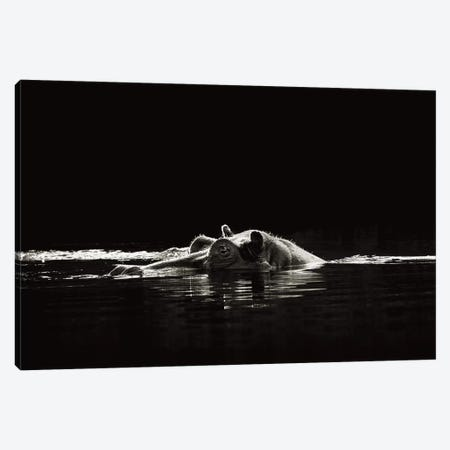 B&W Hippo At Waters Edge Canvas Print #KTI45} by Klaus Tiedge Canvas Wall Art