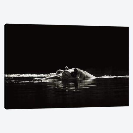 B&W Hippo At Waters Edge Canvas Print #KTI45} by Klaus Tiedge Canvas Wall Art