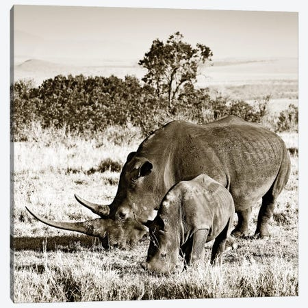 Bonded Rhino Canvas Print #KTI57} by Klaus Tiedge Canvas Print