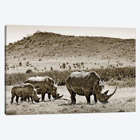 Peaceful Rhinos Canvas Print #KTI77} by Klaus Tiedge Canvas Print