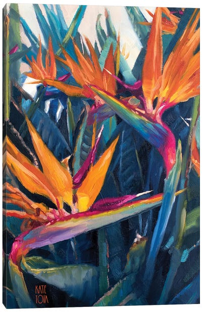Birds of Paradise II Canvas Art Print