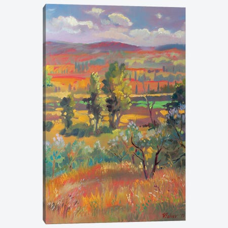 Summer In Tuscany Canvas Print #KTV102} by Katharina Valeeva Canvas Artwork