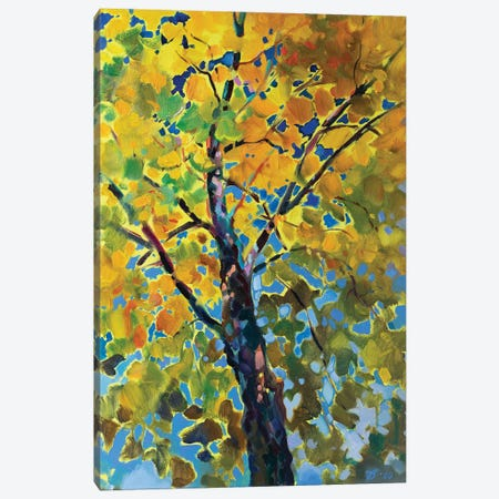 Sunny Tree Canvas Print #KTV108} by Katharina Valeeva Canvas Wall Art