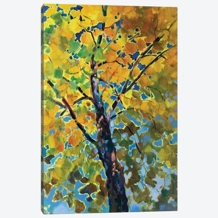 Sunny Tree Canvas Print #KTV108} by Katharina Valeeva Canvas Wall Art
