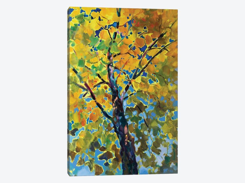 Sunny Tree by Katharina Valeeva 1-piece Art Print
