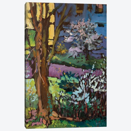 The Beginning Of Spring Canvas Print #KTV111} by Katharina Valeeva Canvas Print