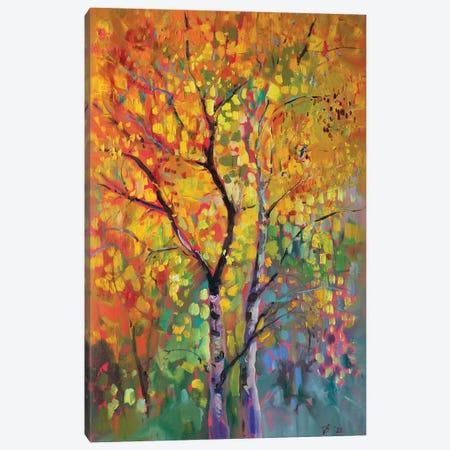 Birch Forest In Autumn Canvas Print #KTV11} by Katharina Valeeva Canvas Art Print