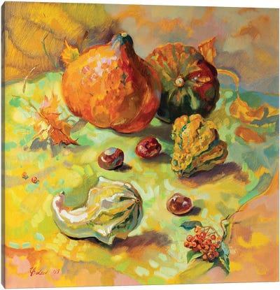 Autumn Still Life With Pumpkins Canvas Art Print