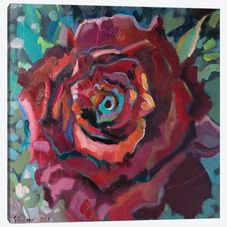 Red Rose Canvas Print #KTV82} by Katharina Valeeva Canvas Wall Art