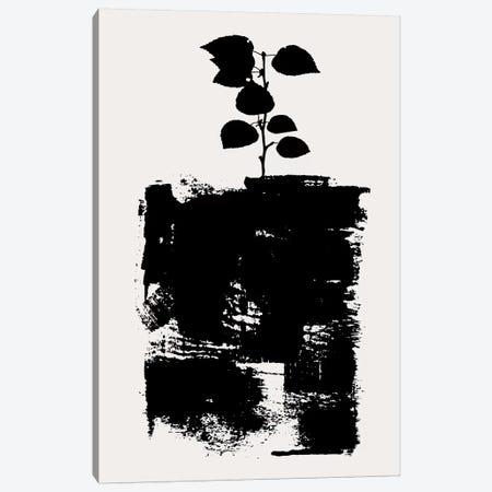 Botanical Stilllife No.5-D Canvas Print #KUB125} by Kubistika Art Print