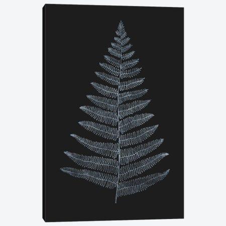 Botanica Minimalistica Canvas Print #KUB15} by Kubistika Canvas Print