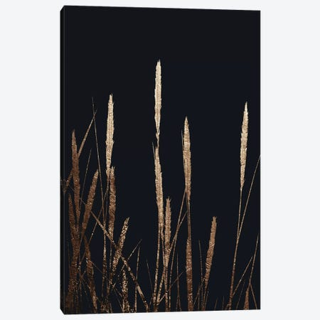 Golden Fields In The Dark Canvas Print #KUB162} by Kubistika Canvas Artwork