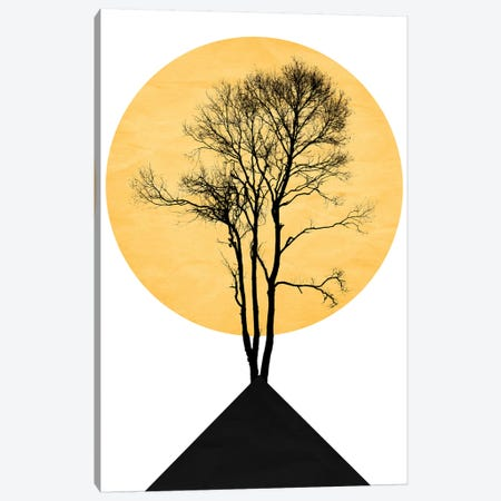 Japanese Zen Garden Canvas Print #KUB173} by Kubistika Art Print