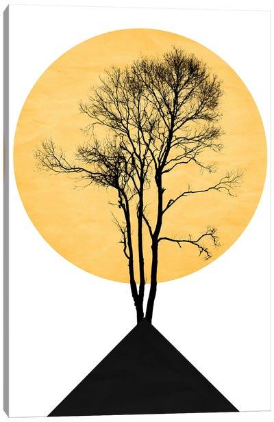 Japanese Zen Garden Canvas Art Print