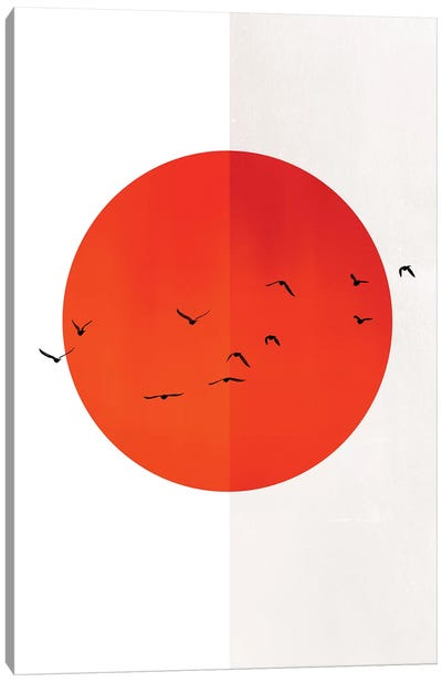 Seagulls Of The Sun Canvas Art Print