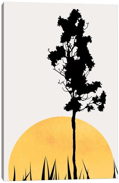 Shadows In The Sun Canvas Art Print