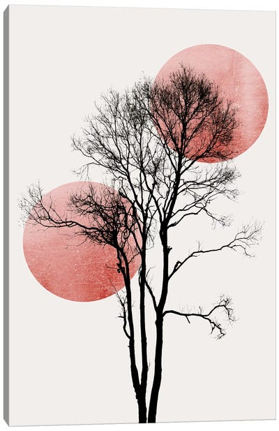 Sun And Moon Hiding-Rosè Canvas Art Print