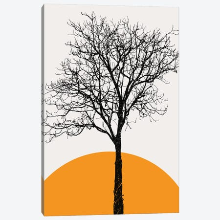 The Birch Canvas Print #KUB234} by Kubistika Canvas Art Print
