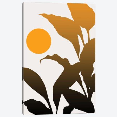 Tropical Sunrise Canvas Print #KUB240} by Kubistika Canvas Art Print