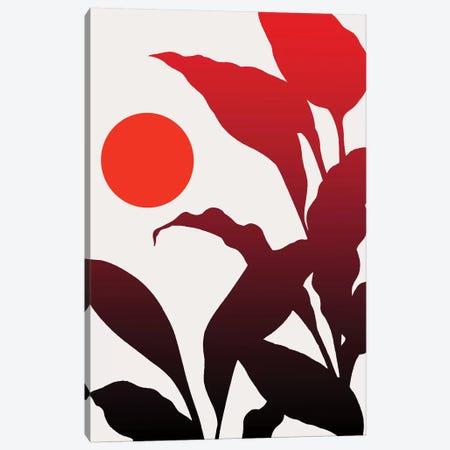 Tropical Sunset Canvas Print #KUB241} by Kubistika Canvas Print