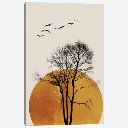 Winter Sunrise - Dark Canvas Print #KUB252} by Kubistika Canvas Wall Art