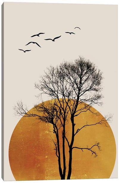 Winter Sunrise - Dark Canvas Art Print