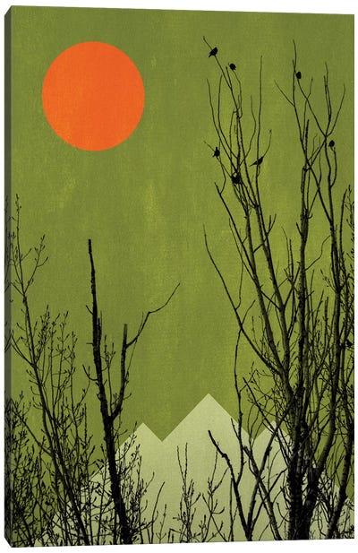 Schwarzwald Canvas Art Print